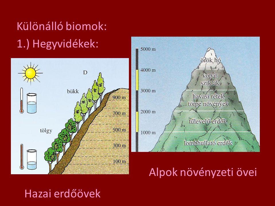Különálló biomok: 1.) Hegyvidékek: Hazai erdőövek Alpok növényzeti övei