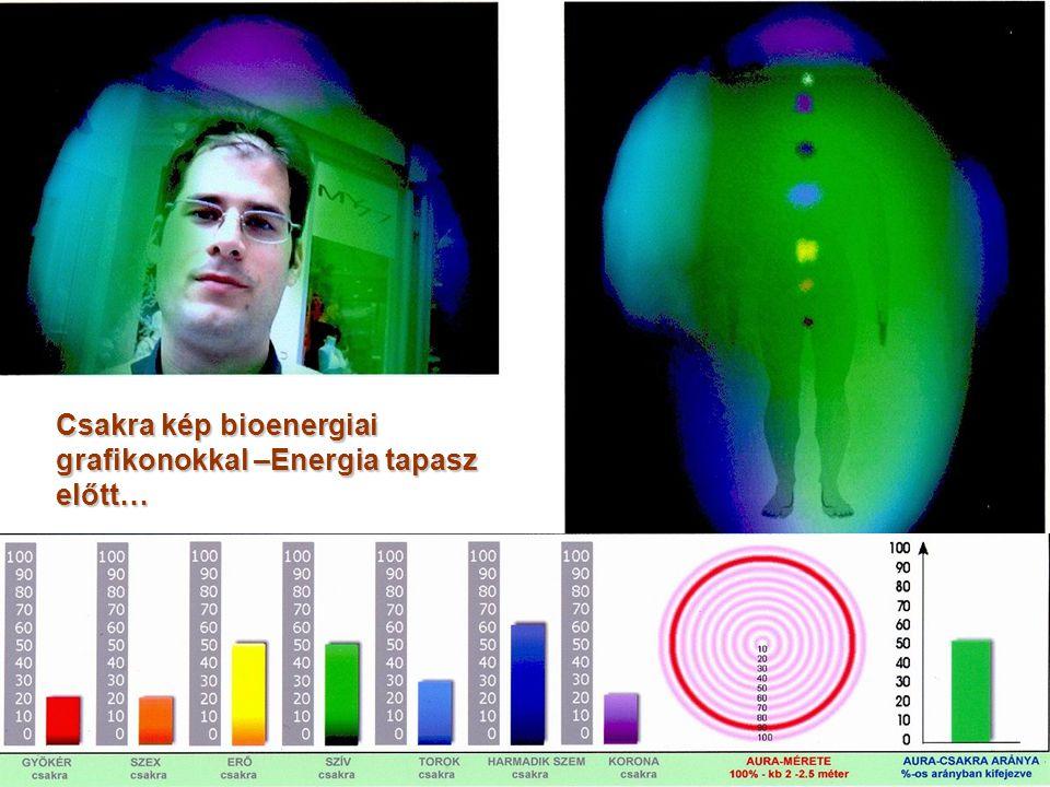 Csakra kép bioenergiai grafikonokkal –Energia tapasz előtt…