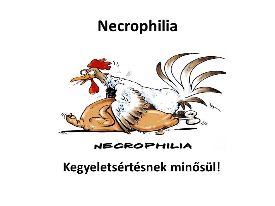 Necrophilia Kegyeletsértésnek minősül!