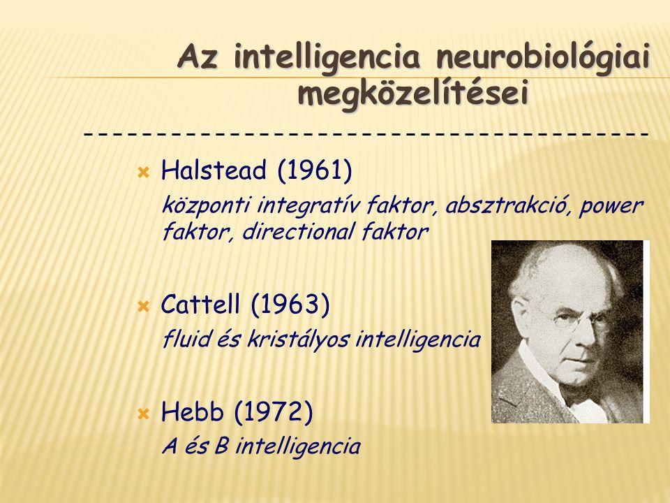  Halstead (1961) központi integratív faktor, absztrakció, power faktor, directional faktor  Cattell (1963) fluid és kristályos intelligencia  Hebb