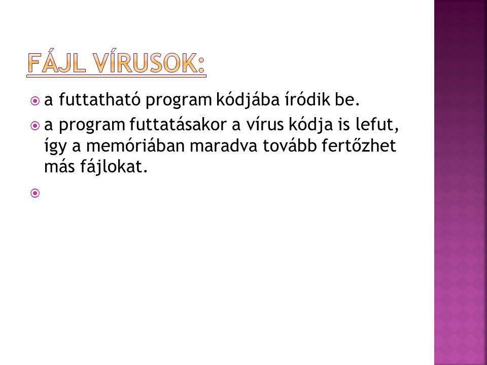  a futtatható program kódjába íródik be.  a program futtatásakor a vírus kódja is lefut, így a memóriában maradva tovább fertőzhet más fájlokat. 