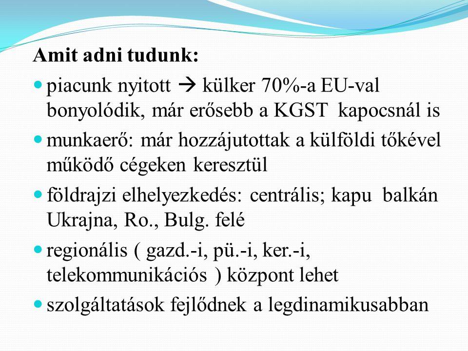 Amit adni tudunk: piacunk nyitott  külker 70%-a EU-val bonyolódik, már erősebb a KGST kapocsnál is munkaerő: már hozzájutottak a külföldi tőkével működő cégeken keresztül földrajzi elhelyezkedés: centrális; kapu balkán Ukrajna, Ro., Bulg.