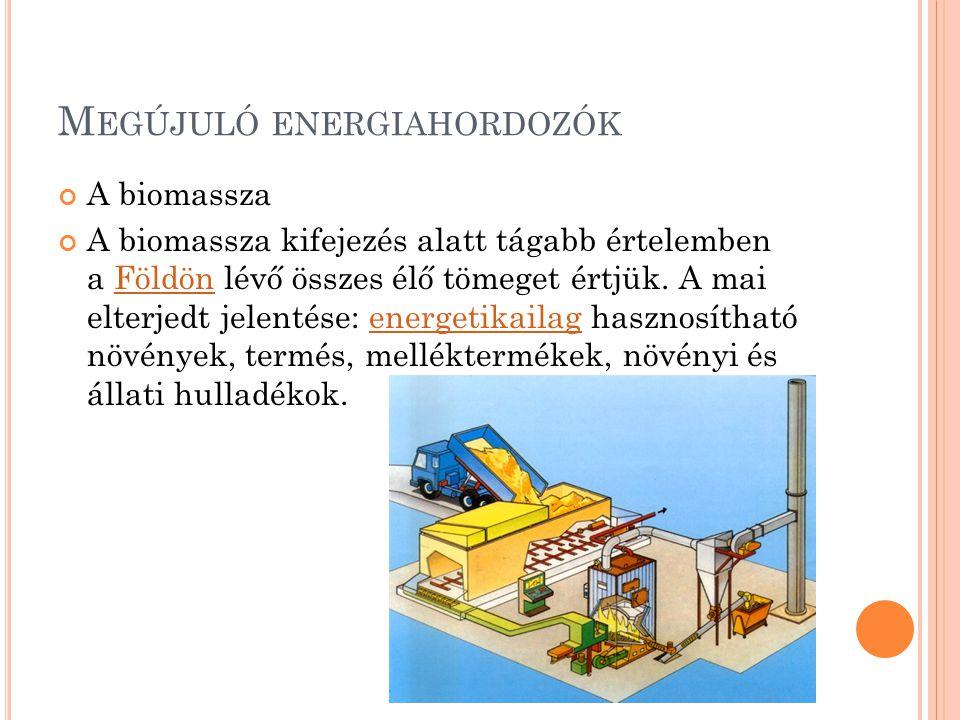 M EGÚJULÓ ENERGIAHORDOZÓK A biomassza A biomassza kifejezés alatt tágabb értelemben a Földön lévő összes élő tömeget értjük. A mai elterjedt jelentése