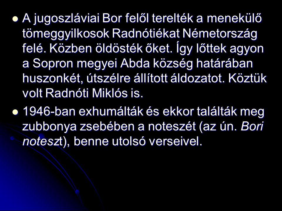 A jugoszláviai Bor felől terelték a menekülő tömeggyilkosok Radnótiékat Németország felé. Közben öldösték őket. Így lőttek agyon a Sopron megyei Abda