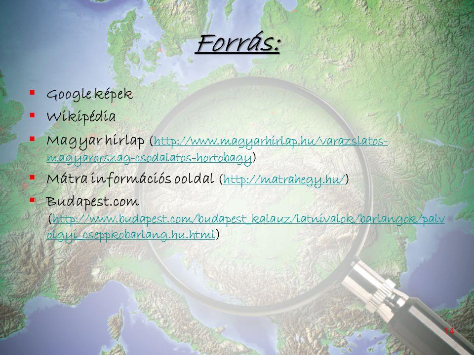 Forrás:  Google képek  Wikipédia  Magyar hirlap (http://www.magyarhirlap.hu/varazslatos- magyarorszag-csodalatos-hortobagy)http://www.magyarhirlap.