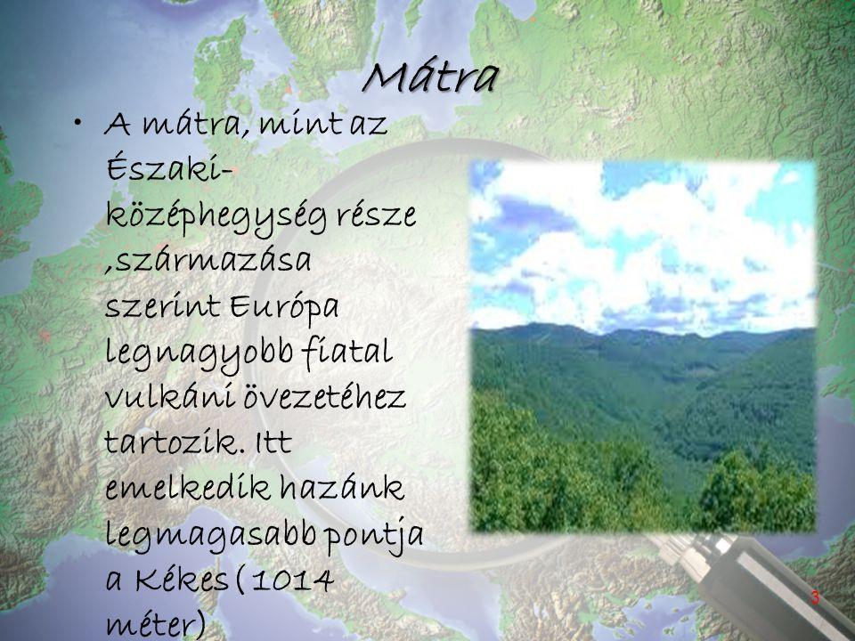 Mátra A mátra, mint az Északi- középhegység része,származása szerint Európa legnagyobb fiatal vulkáni övezetéhez tartozik. Itt emelkedik hazánk legmag