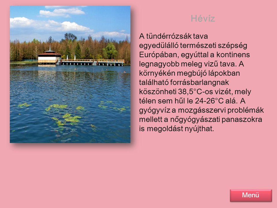 Hévíz A tündérrózsák tava egyedülálló természeti szépség Európában, egyúttal a kontinens legnagyobb meleg vizű tava. A környékén megbújó lápokban talá