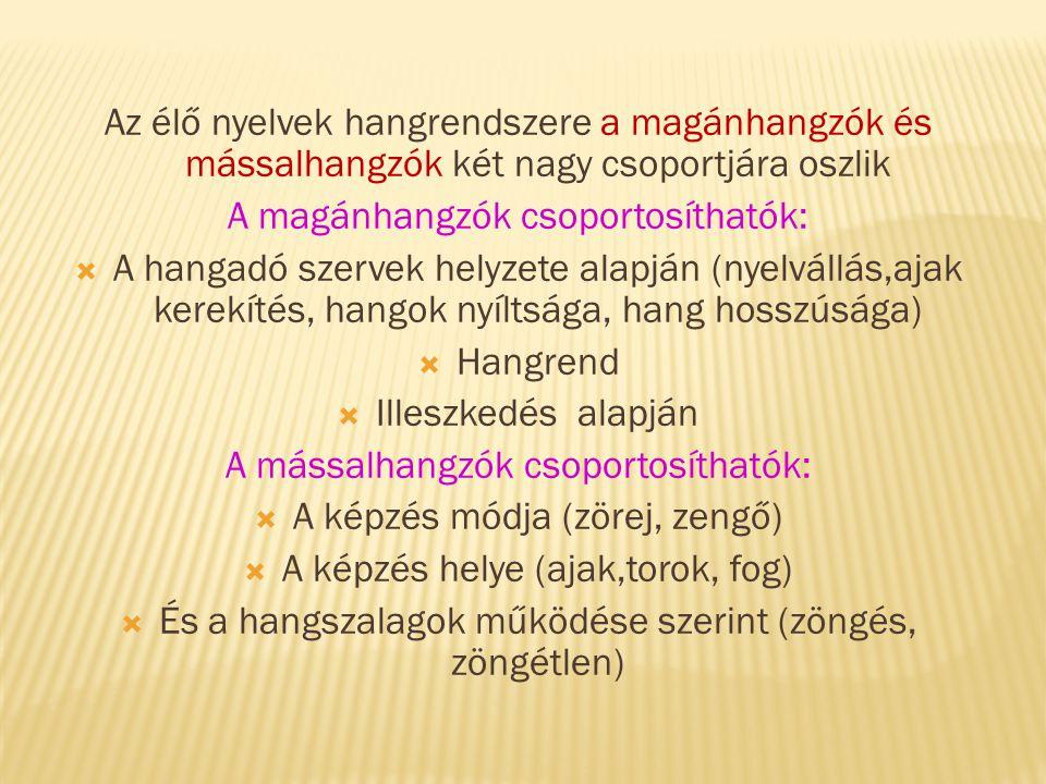 Az élő nyelvek hangrendszere a magánhangzók és mássalhangzók két nagy csoportjára oszlik A magánhangzók csoportosíthatók:  A hangadó szervek helyzete