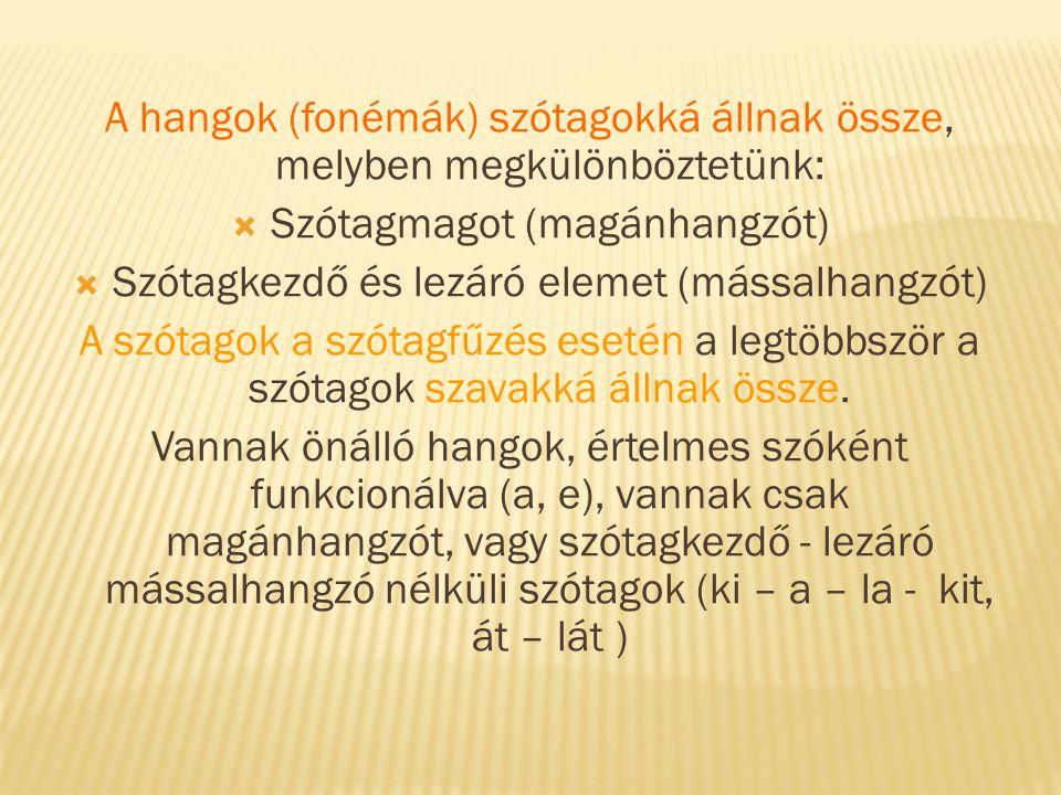 A hangok (fonémák) szótagokká állnak össze, melyben megkülönböztetünk:  Szótagmagot (magánhangzót)  Szótagkezdő és lezáró elemet (mássalhangzót) A s