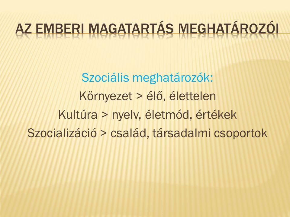 Szociális meghatározók: Környezet > élő, élettelen Kultúra > nyelv, életmód, értékek Szocializáció > család, társadalmi csoportok