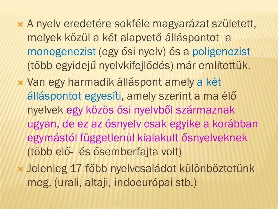  A nyelv eredetére sokféle magyarázat született, melyek közül a két alapvető álláspontot a monogenezist (egy ősi nyelv) és a poligenezist (több egyid