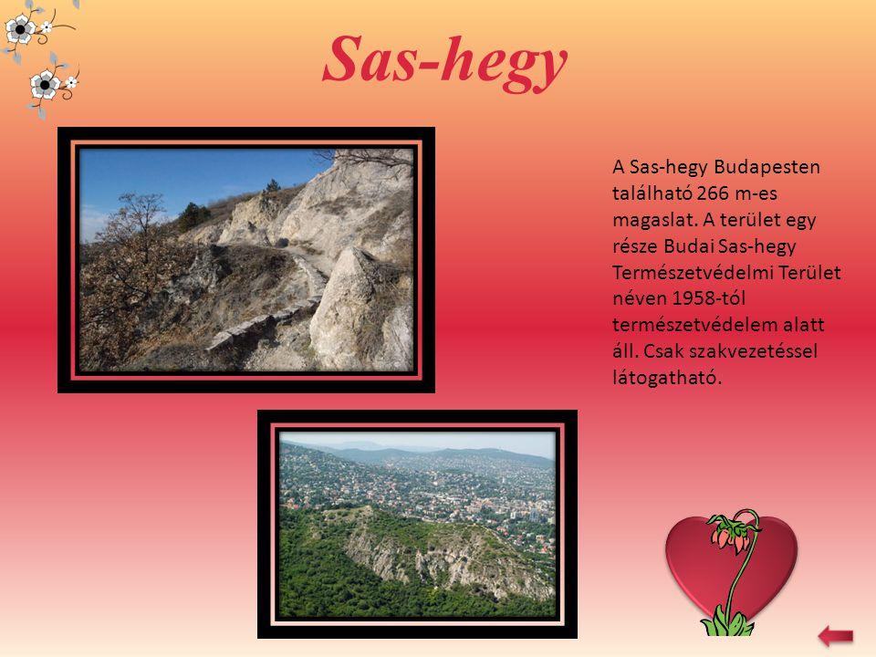 Szalajka-völgy A Fátyol-vízesés a Szilvásvárad melletti Szalajka-völgy talán leglátványosabb természeti képződménye.