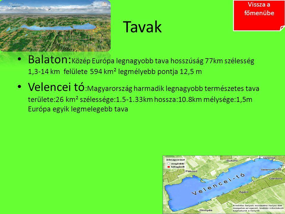 Tavak Balaton: Közép Európa legnagyobb tava hosszúság 77km szélesség 1,3-14 km felülete 594 km² legmélyebb pontja 12,5 m Velencei tó :Magyarország har