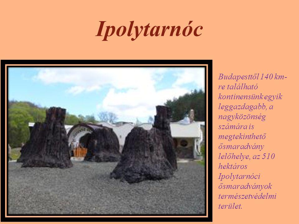 Ipolytarnóc Budapesttől 140 km- re található kontinensünk egyik leggazdagabb, a nagyközönség számára is megtekinthető ősmaradvány lelőhelye, az 510 he