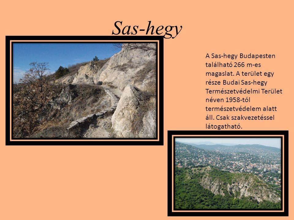 Sas-hegy A Sas-hegy Budapesten található 266 m-es magaslat. A terület egy része Budai Sas-hegy Természetvédelmi Terület néven 1958-tól természetvédele