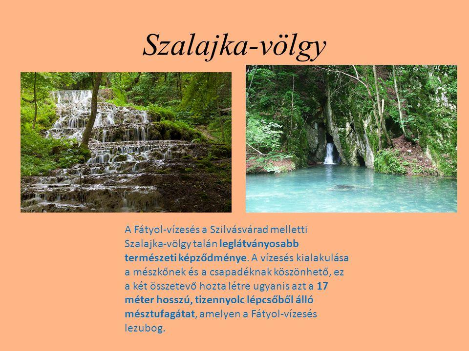 Szalajka-völgy A Fátyol-vízesés a Szilvásvárad melletti Szalajka-völgy talán leglátványosabb természeti képződménye. A vízesés kialakulása a mészkőnek