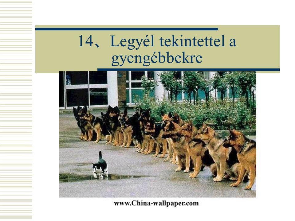 14 、 Legyél tekintettel a gyengébbekre