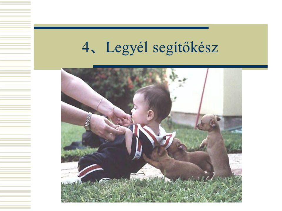 4 、 Legyél segítőkész