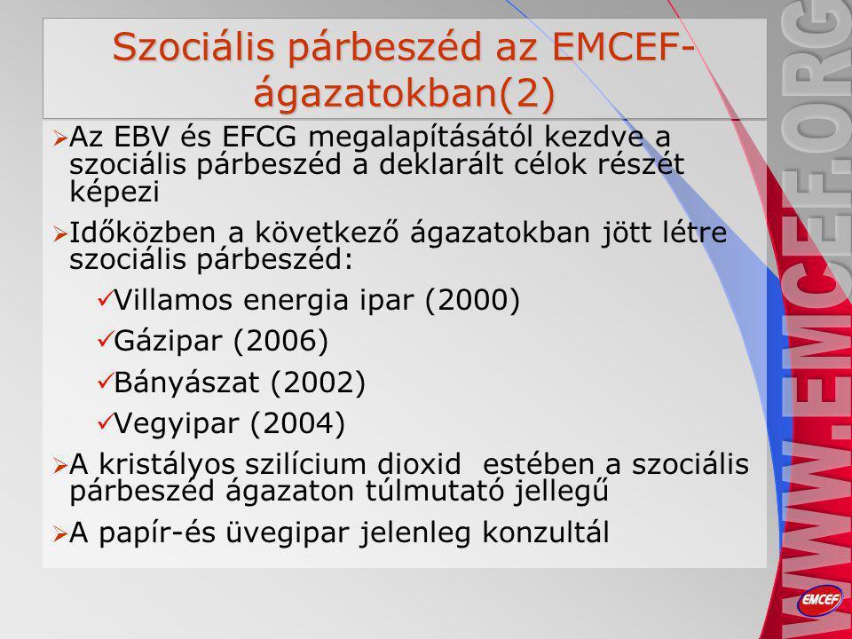 Szociális párbeszéd az EMCEF- ágazatokban(2)  Az EBV és EFCG megalapításától kezdve a szociális párbeszéd a deklarált célok részét képezi  Időközben a következő ágazatokban jött létre szociális párbeszéd: Villamos energia ipar (2000) Gázipar (2006) Bányászat (2002) Vegyipar (2004)  A kristályos szilícium dioxid estében a szociális párbeszéd ágazaton túlmutató jellegű  A papír-és üvegipar jelenleg konzultál