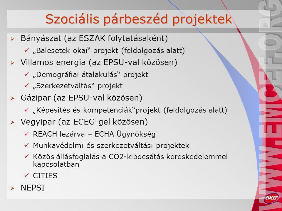 """Szociális párbeszéd projektek  Bányászat (az ESZAK folytatásaként) """"Balesetek okai projekt (feldolgozás alatt)  Villamos energia (az EPSU-val közösen) """"Demográfiai átalakulás projekt """"Szerkezetváltás projekt  Gázipar (az EPSU-val közösen) """"Képesítés és kompetenciák projekt (feldolgozás alatt)  Vegyipar (az ECEG-gel közösen) REACH lezárva – ECHA Ügynökség Munkavédelmi és szerkezetváltási projektek Közös állásfoglalás a CO2-kibocsátás kereskedelemmel kapcsolatban CITIES  NEPSI"""