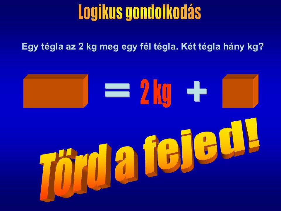 Egy tégla az 2 kg meg egy fél tégla. Két tégla hány kg?