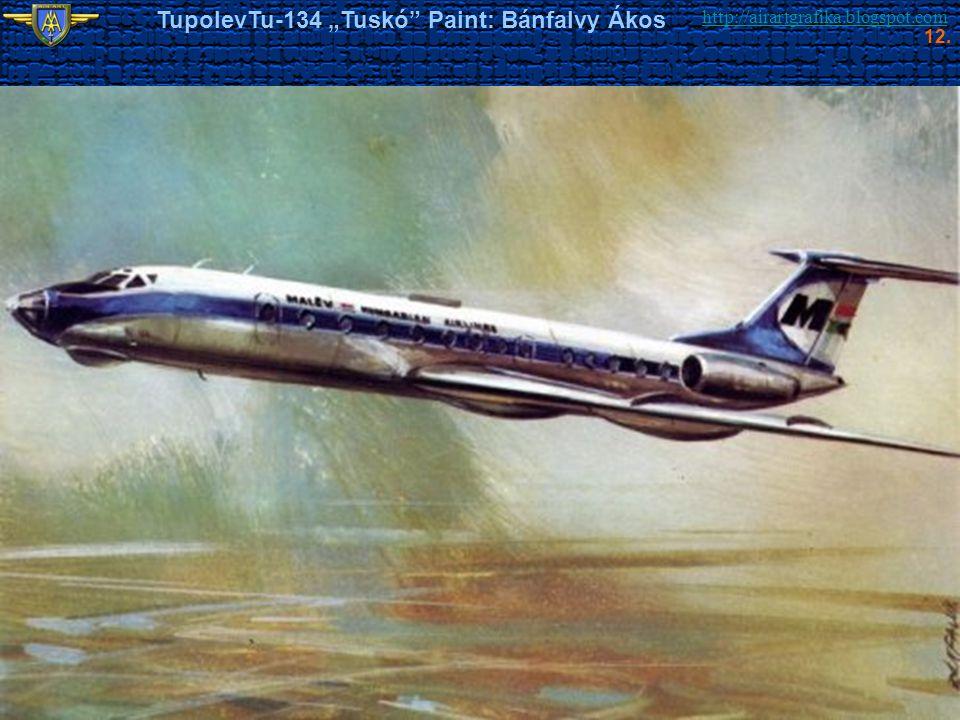 """http://airartgrafika.blogspot.com TupolevTu-134 """"Tuskó"""" Paint: Bánfalvy Ákos 12."""