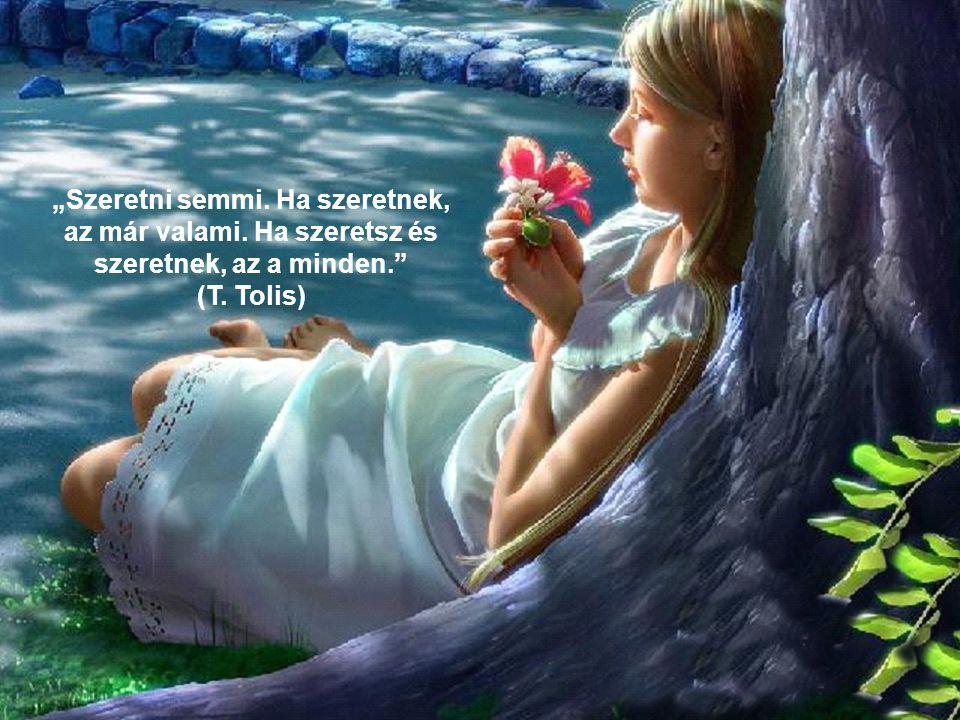 Minden múló a földön, minden elmúlik valaha csak a szerelem szava súgja Soha!