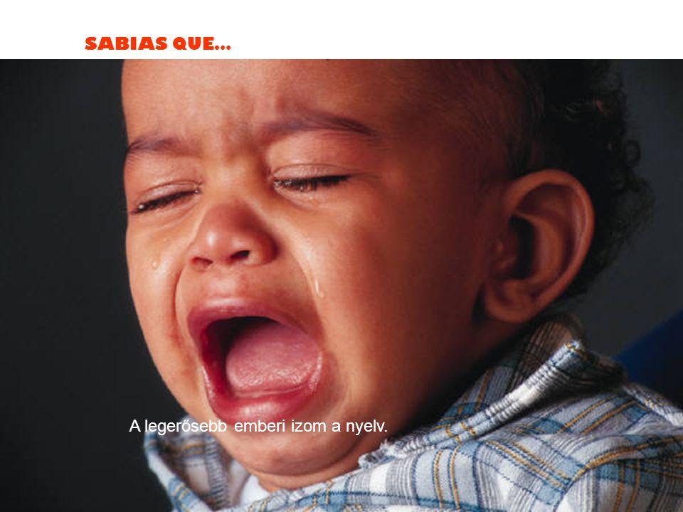 SABIAS QUE… A legerősebb emberi izom a nyelv.