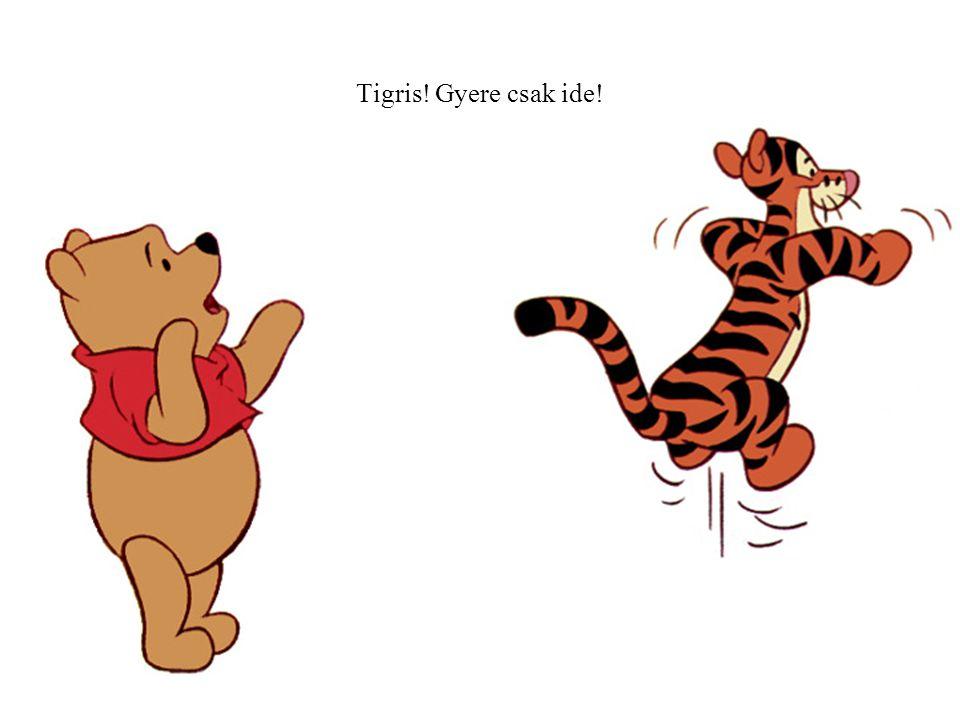 Tigris! Gyere csak ide!