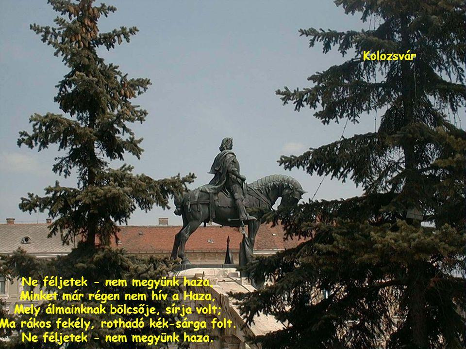 Magyarország szégyenteljes feldarabolása 1920 június 4-én történt.