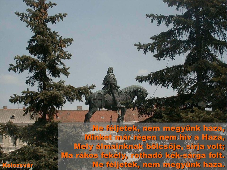 A szégyenteljes Trianoni békediktátum 1920 június 4-én történt. Ezzel a diktátummal csatolták el Magyarország kétharmadát a mai anyaországtól. Anyaors