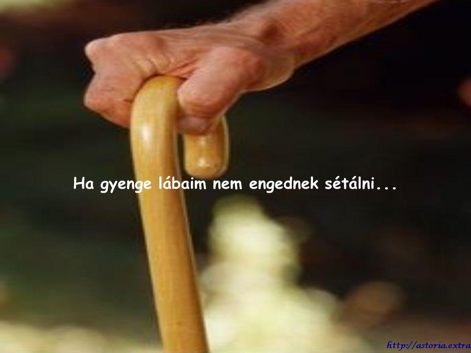 Ha valaha nem akarok enni, ne erőltesd. Jól tudom, hogy mikor kell ennem és mikor nem. http://astoria.extra.hu