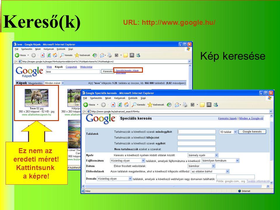 Kereső(k) URL: http://www.google.hu/ Kép keresése Ez nem az eredeti méret! Kattintsunk a képre!