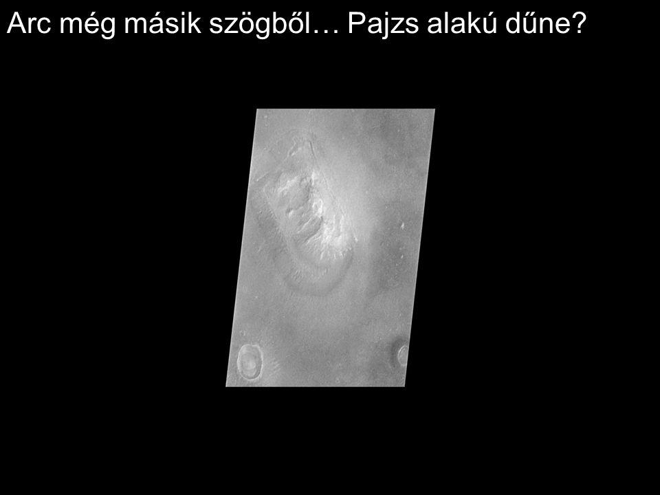Arc még másik szögből… Pajzs alakú dűne?