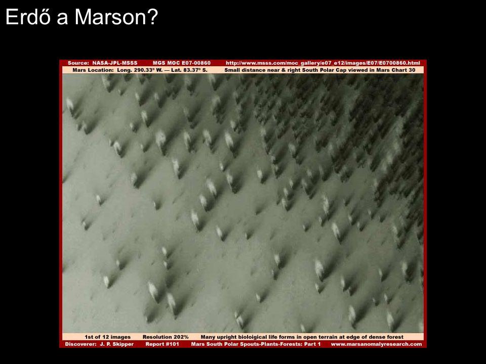 Erdő a Marson?