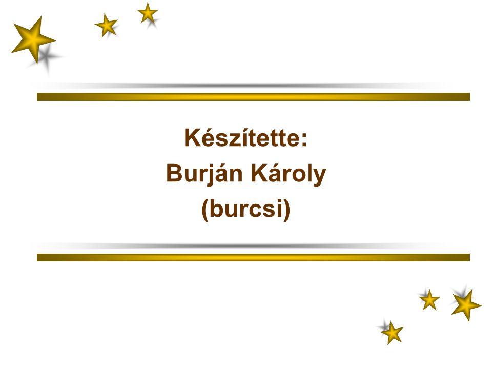 Készítette: Burján Károly (burcsi)
