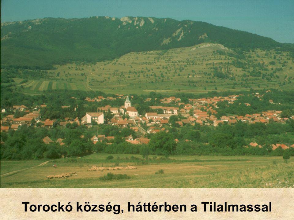 Torockó község, háttérben a Tilalmassal