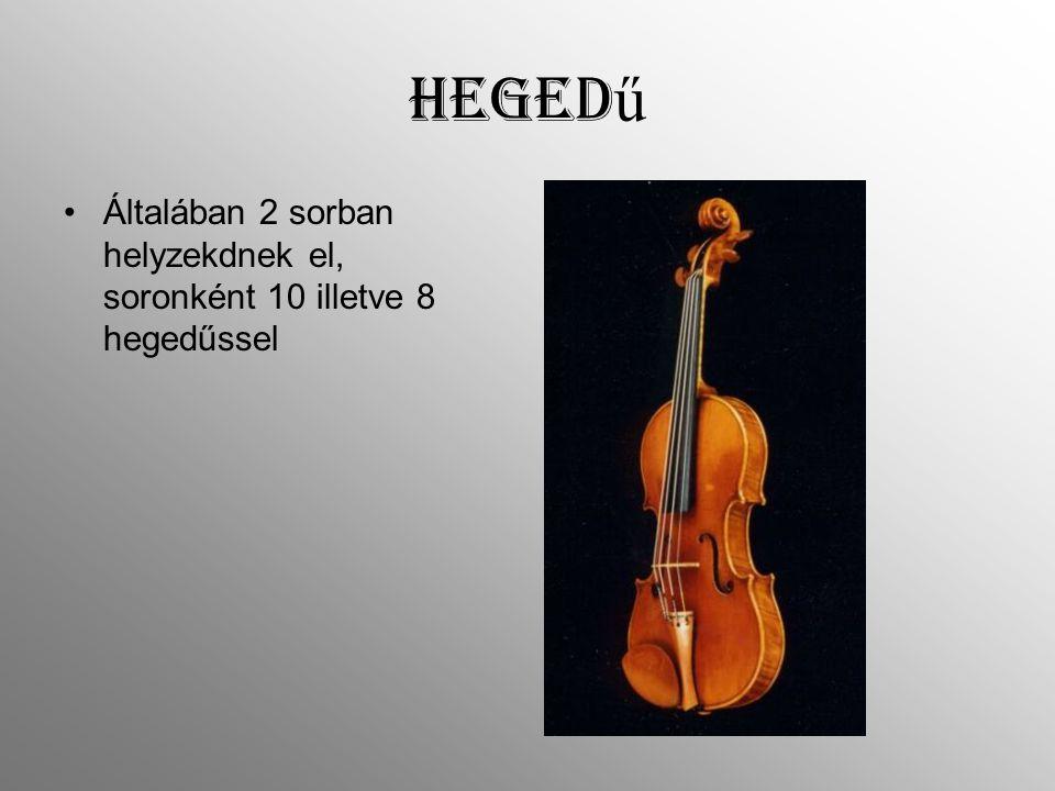 Heged ű Általában 2 sorban helyzekdnek el, soronként 10 illetve 8 hegedűssel