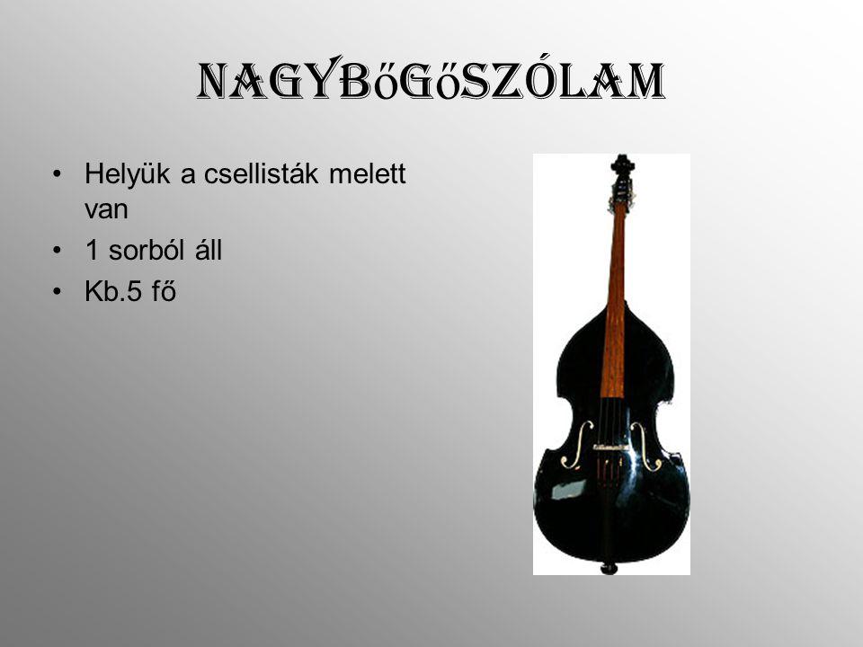 Nagyb ő g ő szólam Helyük a csellisták melett van 1 sorból áll Kb.5 fő