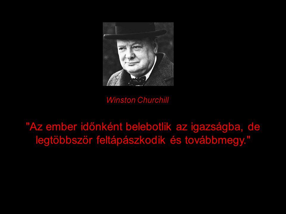 Az ember időnként belebotlik az igazságba, de legtöbbször feltápászkodik és továbbmegy. Winston Churchill
