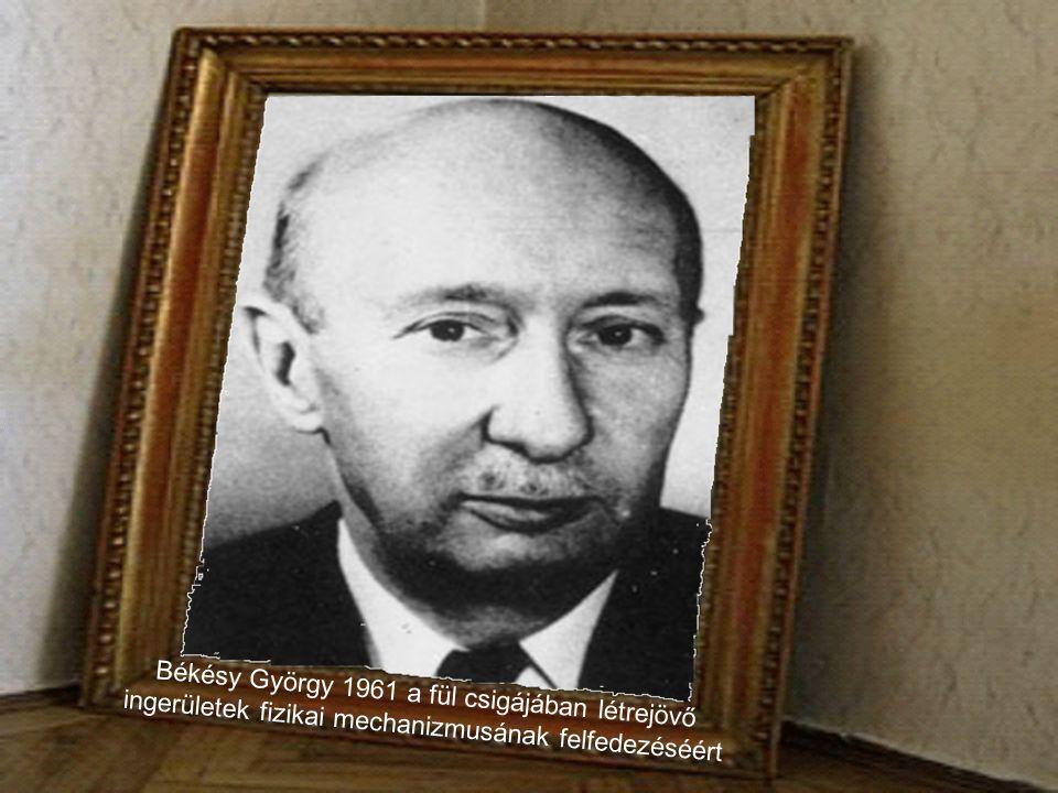 Hevesy György 1943 a radioaktív izotópok indikátorként való alkalmazásáért a kémiai kutatásban