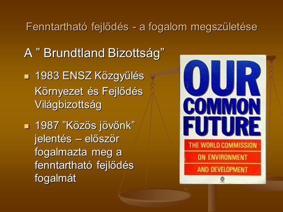 """Fenntartható fejlődés - a fogalom megszületése A """" Brundtland Bizottság"""" 1983 ENSZ Közgyűlés 1983 ENSZ Közgyűlés Környezet és Fejlődés Világbizottság"""
