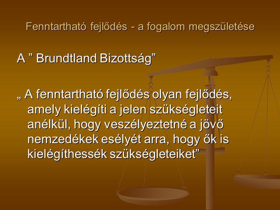 """Fenntartható fejlődés - a fogalom megszületése A """" Brundtland Bizottság"""" """" A fenntartható fejlődés olyan fejlődés, amely kielégíti a jelen szükséglete"""