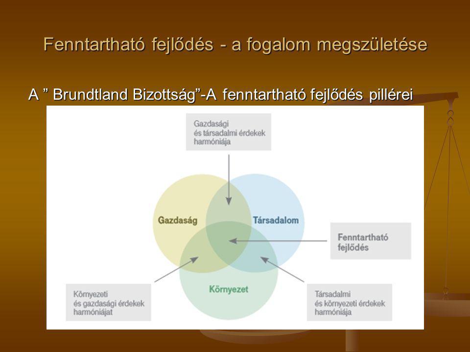 """Fenntartható fejlődés - a fogalom megszületése A """" Brundtland Bizottság""""-A fenntartható fejlődés pillérei"""
