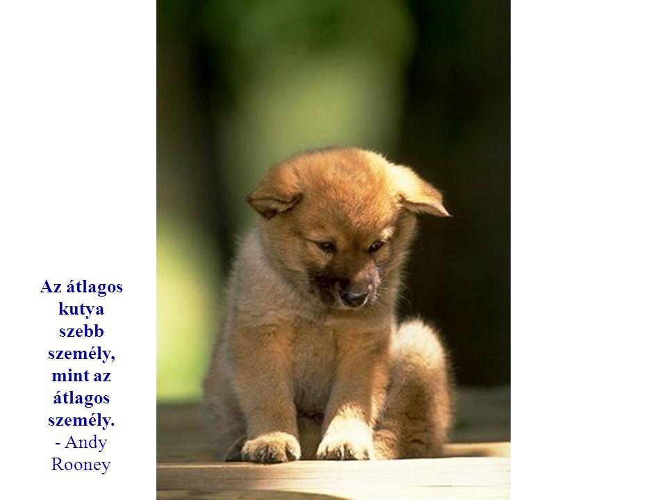 Ha nincsenek kutyák a menyországban, akkor oda akarok menni, ahova azok is mentek. - Will Rogers