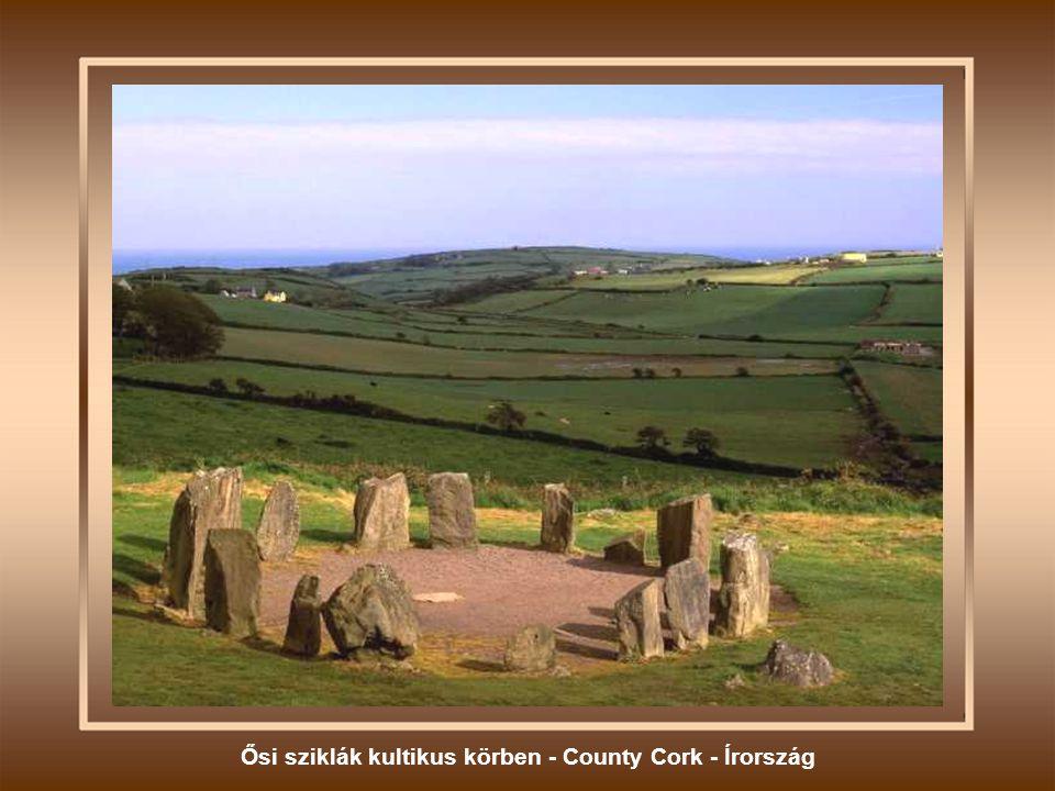 Ősi sziklák kultikus körben - County Cork - Írország