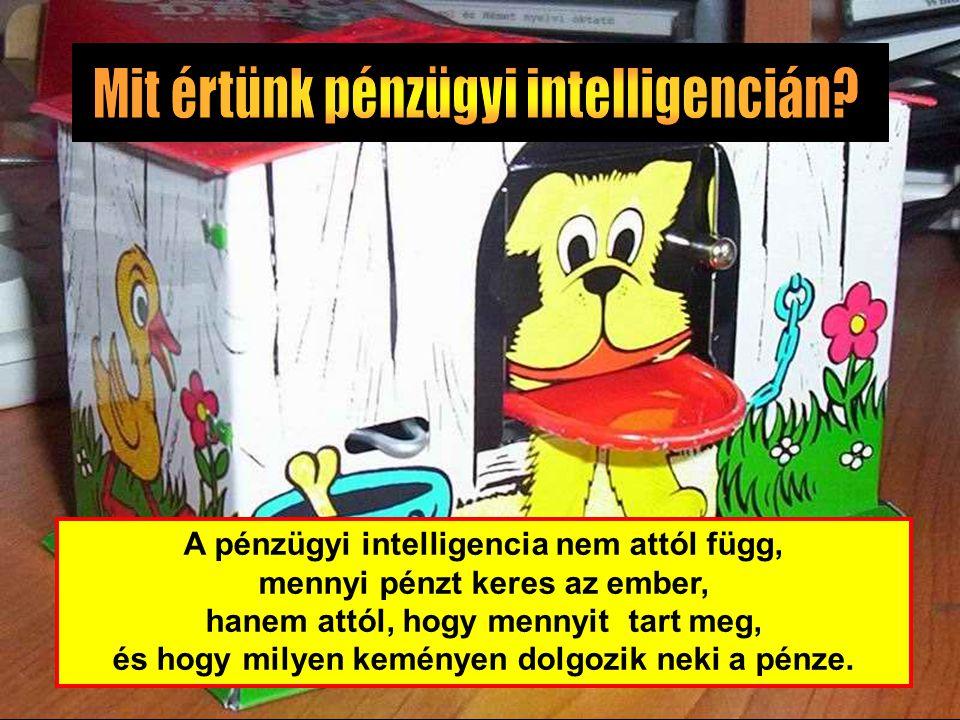 A pénzügyi intelligencia nem attól függ, mennyi pénzt keres az ember, hanem attól, hogy mennyit tart meg, és hogy milyen keményen dolgozik neki a pénz
