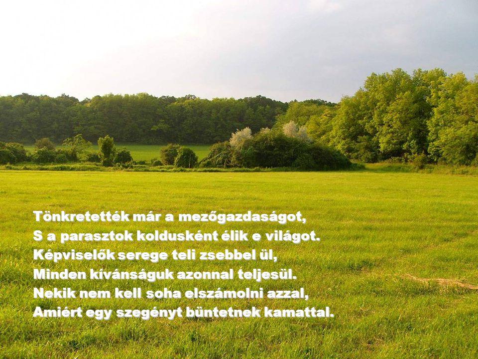 Tönkretették már a mezőgazdaságot, S a parasztok koldusként élik e világot.