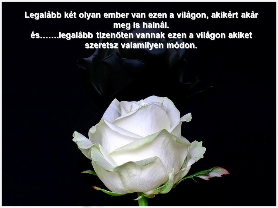 Jobban örülök egy szál rózsának és egy kedves szónak egy Baráttól, amíg itt vagyok, mint egy egész vagonnal akkor, amikor már elmentem.