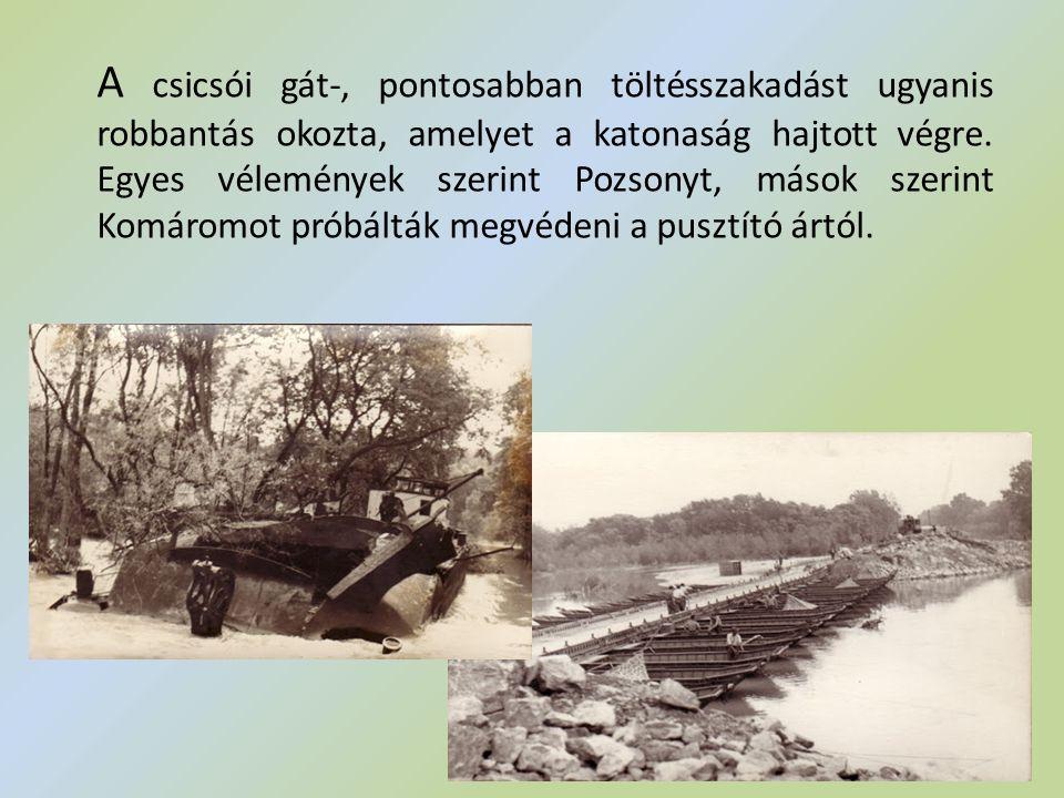 A csicsói gát-, pontosabban töltésszakadást ugyanis robbantás okozta, amelyet a katonaság hajtott végre. Egyes vélemények szerint Pozsonyt, mások szer